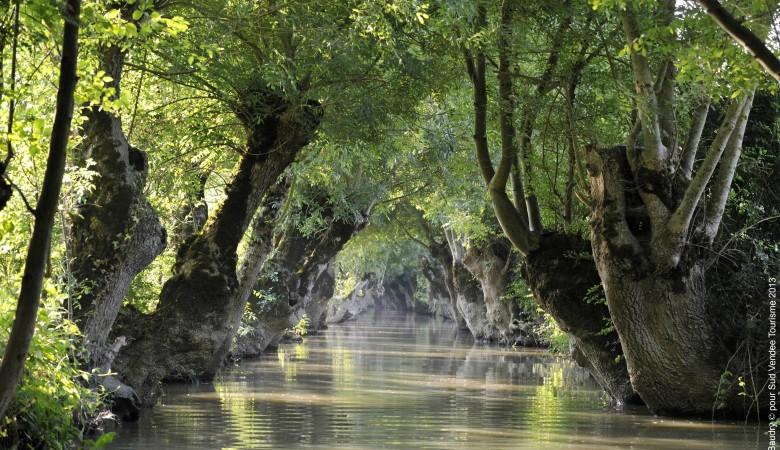 Marais Poitevin Sud Vendée